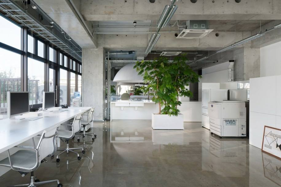 Creating The Best Office Layout. Office Design